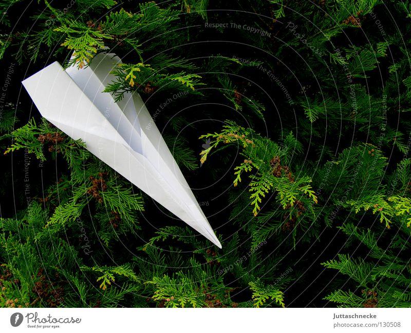 Bruchlandung Flugzeug Papierflieger Spielen zielen verfehlen weiß grün Sträucher Flugplatz gefaltet abgestürzt Absturz festhängen Treffer Freizeit & Hobby