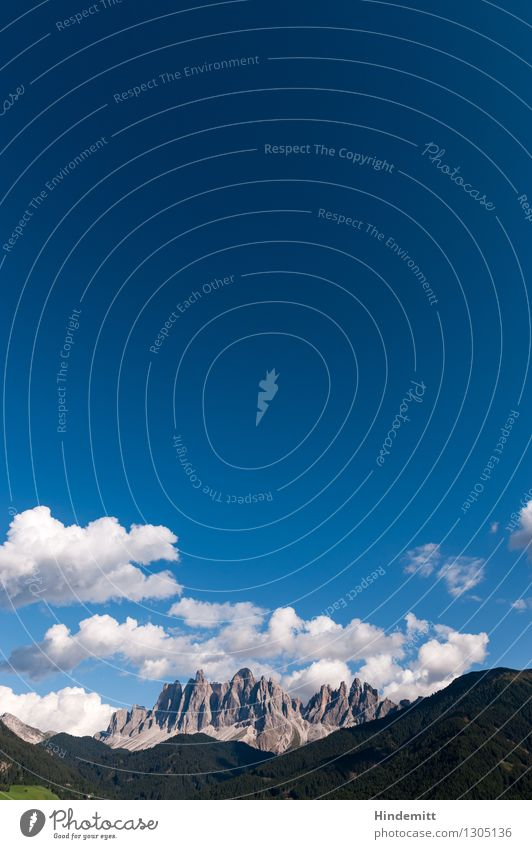 Geisler Umwelt Natur Landschaft Himmel Wolkenloser Himmel Sommer Wiese Wald Hügel Felsen Alpen Berge u. Gebirge Dolomiten Gipfel Ferne hoch wild blau grau grün