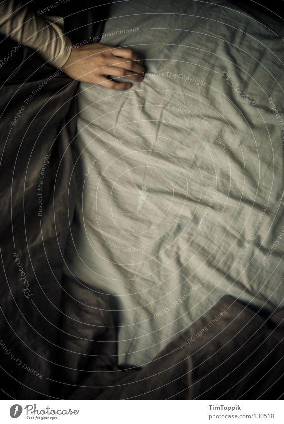 Wo bist du? Mensch Hand Einsamkeit Arme schlafen Bett Suche Bettwäsche Falte Sehnsucht Müdigkeit Partnerschaft Decke Hauskatze Single Schlafzimmer