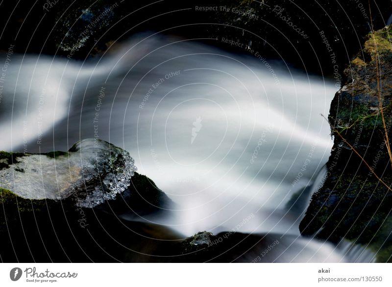 Soft schön Berge u. Gebirge Landschaft Wasser Bach Wasserfall kalt weich Wildbach Schwarzwald Schauinsland Mittelgebirge graufilter Langzeitbelichtung