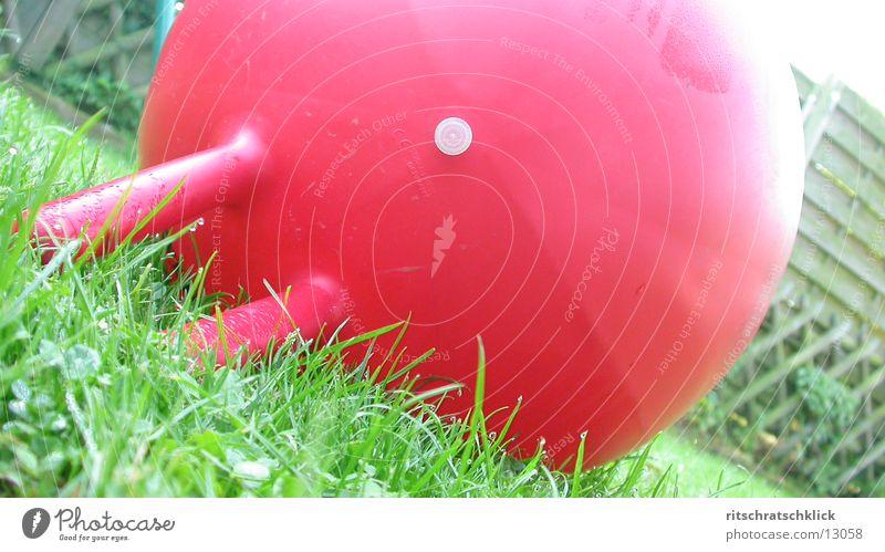 huepfball rot Gras Ball Dinge