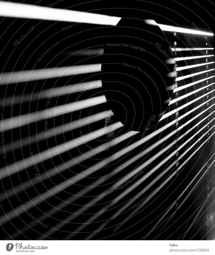 STRIPES III Licht Streifen Raum Wand Lampe aufwachen Schwarzweißfoto chch Sonne sun Schatten living space modern Morgen ...
