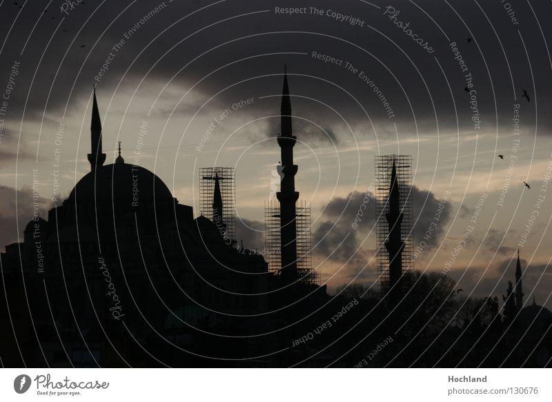 Moschee am Abend, Islam im Aufbruch Stadt Wolken Religion & Glaube Vogel Architektur Hotel Andalusien Gebet Tourist Abenddämmerung Türkei Cordoba Baugerüst Islam Istanbul Kuppeldach