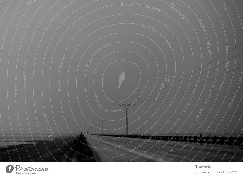 Road to Römö Einsamkeit Landschaft Straße Wege & Pfade Küste Regen Wetter Nebel trist Sehnsucht Fernweh schlechtes Wetter Dänemark Rømø