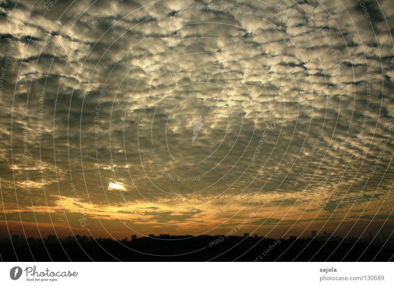 schäfchen zählen Himmel Baum Sonne Wolken Wetter Horizont ästhetisch Asien Skyline Aussicht Singapore vorhersagen Altokumulus floccus Bankenviertel Südostasien