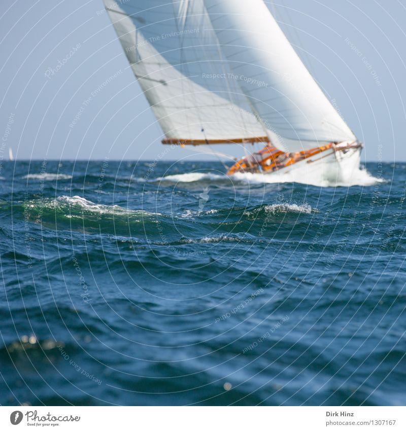 Wellengleiter Segeln Jacht elegant frei Unendlichkeit maritim blau Erholung erleben Freiheit Freizeit & Hobby Freude Geschwindigkeit Horizont Kraft Tourismus