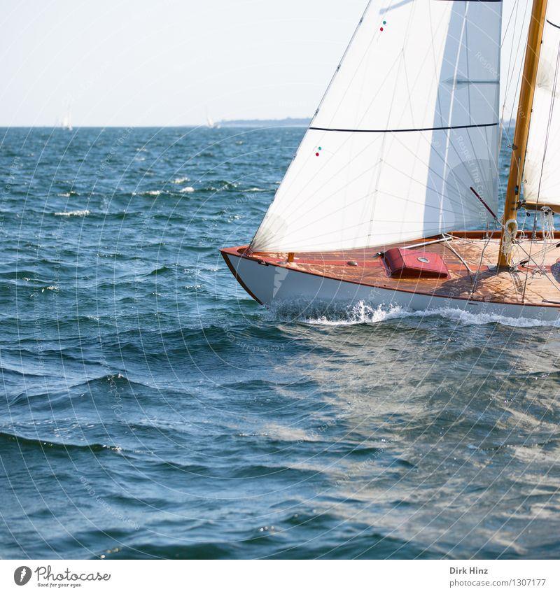 Segeln auf der Ostsee Ferien & Urlaub & Reisen blau Sommer Wasser Sonne Erholung Meer ruhig Ferne Bewegung Freiheit Lifestyle braun Horizont Tourismus Wellen