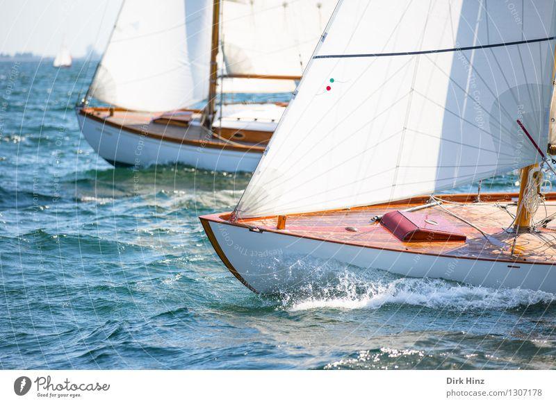 Maritimes Rennen Ferien & Urlaub & Reisen blau Wasser Erholung Freude Ferne Bewegung Freiheit braun Freizeit & Hobby Tourismus elegant Wellen ästhetisch