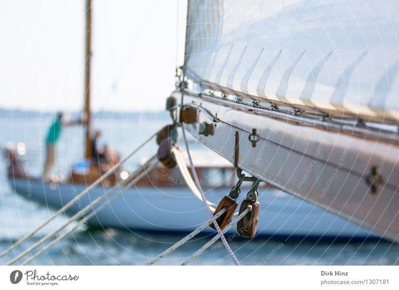 ausgestreckt Ferien & Urlaub & Reisen Ausflug Ferne Sommer Sommerurlaub Meer Segeln Jacht alt lang maritim braun Erholung Freiheit Freizeit & Hobby Freude