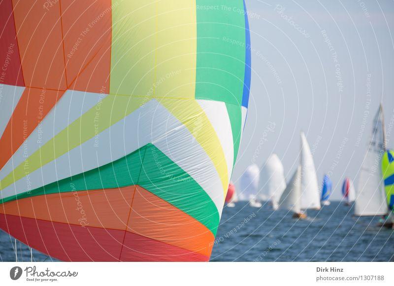 Bunter Spinnaker blau grün Meer Ferne Reisefotografie Freiheit Horizont orange Freizeit & Hobby Tourismus frisch Fröhlichkeit groß Hoffnung Unendlichkeit Ostsee
