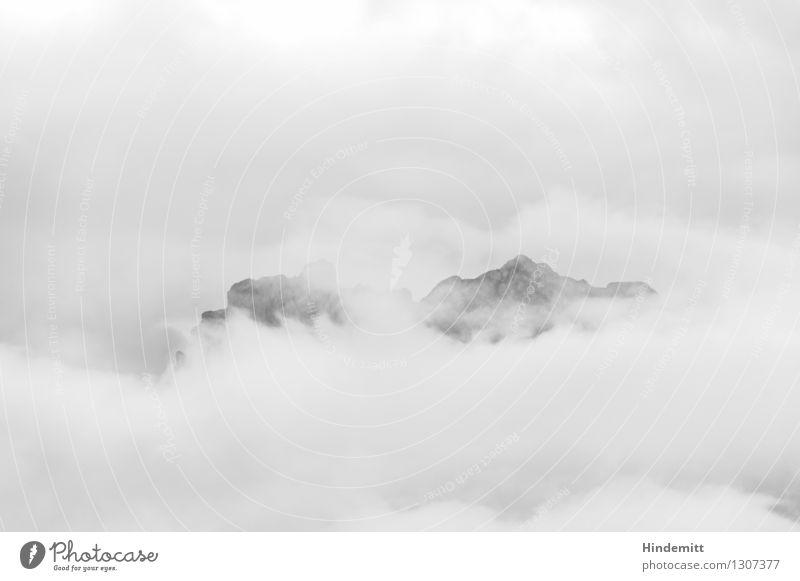 In Wolken Umwelt Natur Landschaft Urelemente Erde Luft Wasser Himmel Sommer Klima schlechtes Wetter Nebel Felsen Alpen Berge u. Gebirge Dolomiten