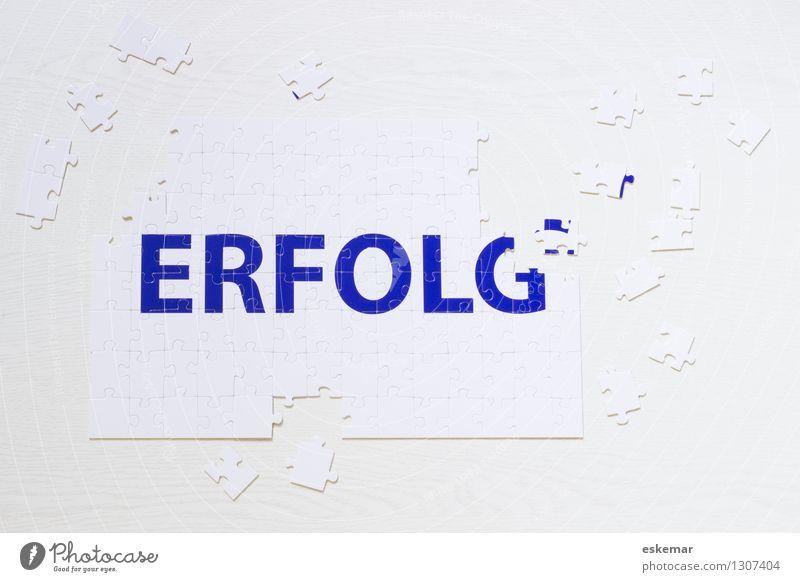 Erfolg Arbeit & Erwerbstätigkeit Wirtschaft Business Karriere Spielzeug Puzzle Spielen blau weiß Zufriedenheit Farbfoto Innenaufnahme Menschenleer