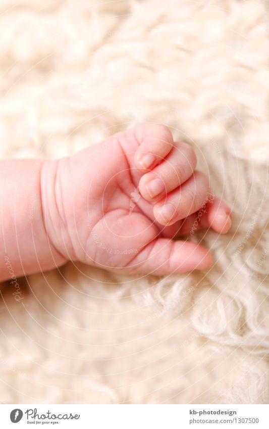 Hand of a small baby Mensch Gesundheit Gesundheitswesen Baby festhalten Körperpflege