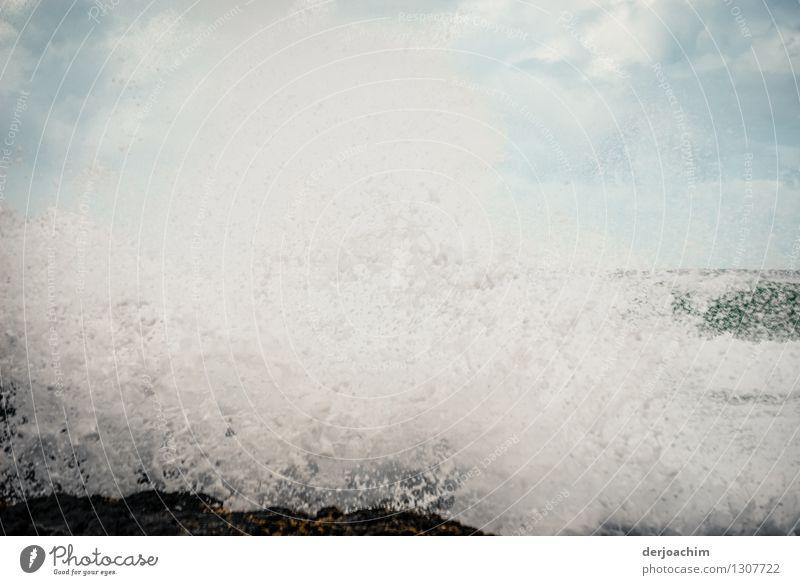 frenetisch Natur Ferien & Urlaub & Reisen schön Sommer Wasser weiß Meer Leben Bewegung außergewöhnlich Angst Kraft Wellen Geschwindigkeit genießen beobachten