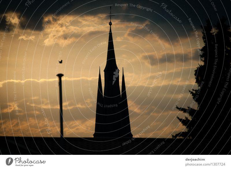 Der Tag geht Stadt Sommer ruhig schwarz Umwelt außergewöhnlich Stein Deutschland genießen Ausflug fantastisch Kirche beobachten einzigartig Schönes Wetter Neugier