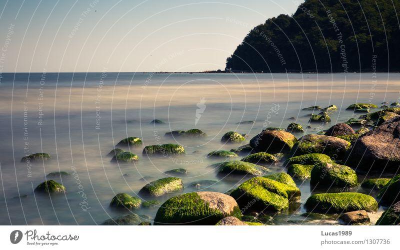 Natur Umwelt Landschaft Pflanze Sand Wasser Himmel Wolkenloser Himmel Sommer Klima Schönes Wetter Nebel Moos Algen Stein Felsen Wellen Küste Strand Ostsee See