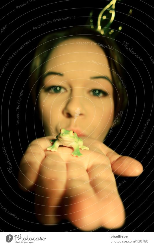 Froschkönig, die Dritte! Frau Erwachsene Hand Schmuck Liebe Blick Sympathie Freundschaft Tierliebe Verliebtheit Romantik schön Begierde Prinzessin Dame Kröte