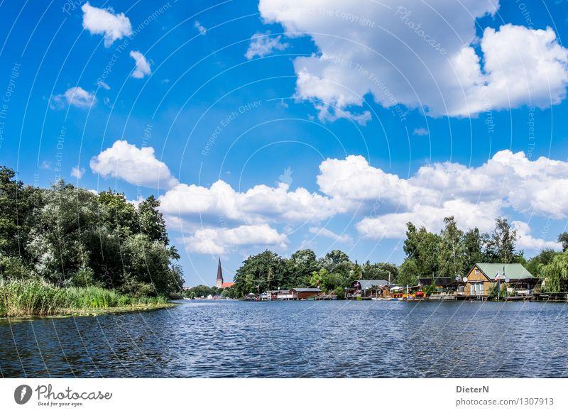 Warnow Natur Landschaft Wasser Himmel Wolken Sommer Wetter Schönes Wetter Baum Seeufer Flussufer Rostock Stadtrand Menschenleer Kirche Bauwerk Gebäude