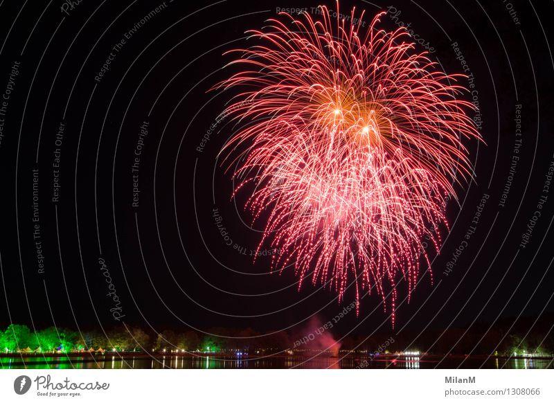 Feuerwerk am See Sommer Nachtleben Feste & Feiern Veranstaltung Nachthimmel Schönes Wetter Flussufer beobachten fantastisch gigantisch schön orange rosa rot