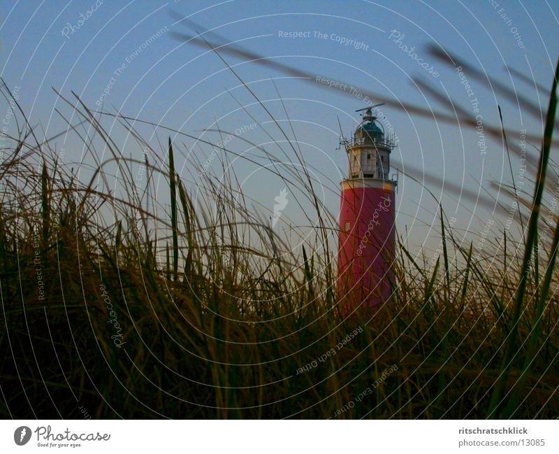 leuchtturm {texel} Leuchtturm Niederlande Meer Stimmung Stranddüne tessel Texel Dämmerung Dünengras Wind