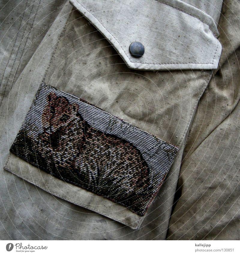 out of africa Leopard Tier Serengeti Savanne Landraubtier Jäger Dekoration & Verzierung grün Hemd Tasche Armee Tarnung Oliven Bekleidung Soldat Krieg Gefecht