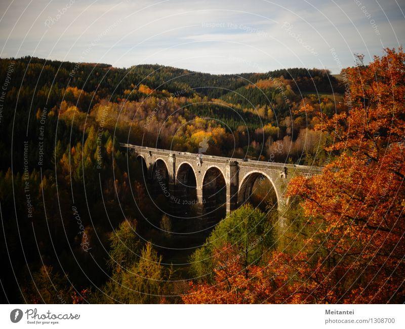 Hetzdorfer Viadukt wandern Natur Landschaft Herbst Baum Blatt Wald Hügel Tal Deutschland Europa Brücke Bauwerk Sehenswürdigkeit Bahnfahren braun mehrfarbig gelb