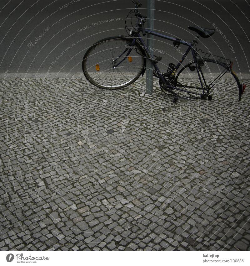 titanik grün Lampe Gras Bewegung Mauer Fahrrad rosa Straßenverkehr Verkehr Studium Technik & Technologie Rad Stahl Bauernhof Mantel ökologisch