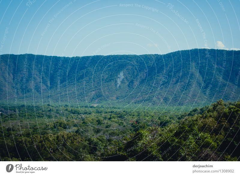 Gewaltig grün schön Sommer Erholung Landschaft ruhig Berge u. Gebirge Holz außergewöhnlich Zufriedenheit Sträucher genießen Ausflug fantastisch beobachten Neugier