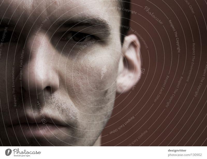 Neustart Mann Gesicht Auge Erholung Stil Denken Mund Zufriedenheit Nase frei Perspektive Frieden beobachten Kontakt Konzentration Flüssigkeit