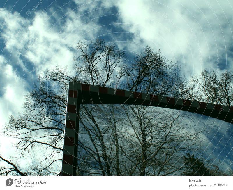 Illusion Himmel Baum Wolken Spiegel Spiegelbild Straßennamenschild Rückspiegel