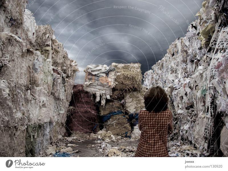 Zettelwirtschaft Frau Himmel Haare & Frisuren dreckig Ordnung Papier Vergänglichkeit schreiben Müll Dienstleistungsgewerbe chaotisch Karton Stapel Umweltschutz