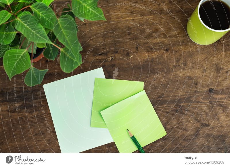 Grüne Zettel mit Topfpflanze Pflanze grün Blume Blatt Holz braun Arbeit & Erwerbstätigkeit Büro Kommunizieren Papier Kaffee schreiben Information Blumenstrauß Schreibtisch Tasse