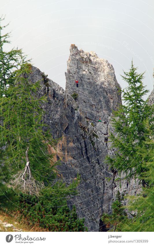 oben angekommen Natur Ferien & Urlaub & Reisen Sommer grün Landschaft Berge u. Gebirge Sport grau Freiheit wandern Abenteuer Gipfel Alpen Klettern Dolomiten