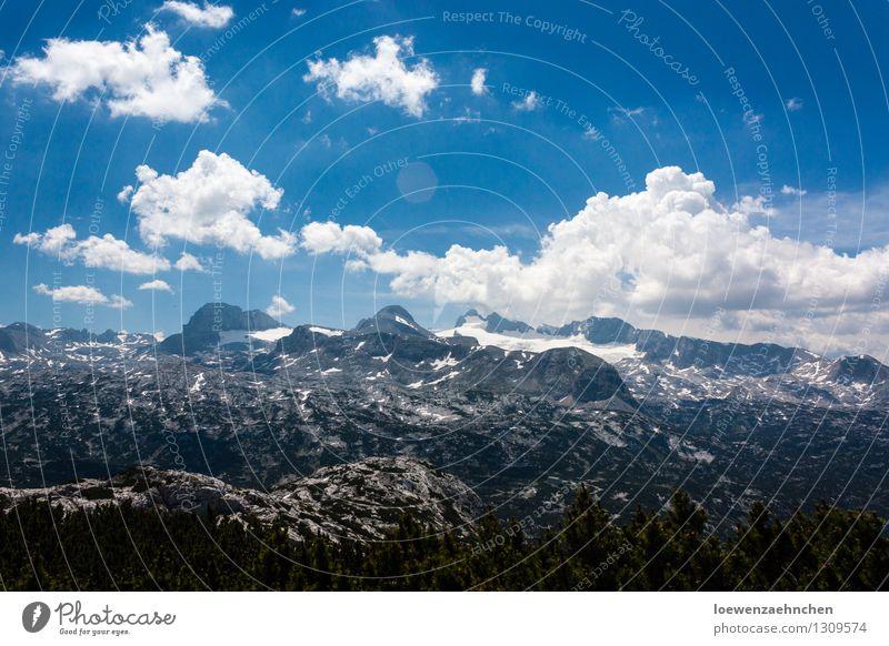 Eiskalte Sonne Ferien & Urlaub & Reisen Ausflug Abenteuer Sommer Schnee Berge u. Gebirge Klettern Bergsteigen Umwelt Natur Landschaft Wolken Schönes Wetter