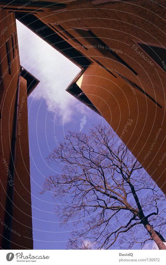 aufstrebende ecke Himmel blau gelb Fenster Linie Wohnung Fassade hoch Ecke Häusliches Leben Dach Pfeil Teile u. Stücke Bauernhof Etage Richtung