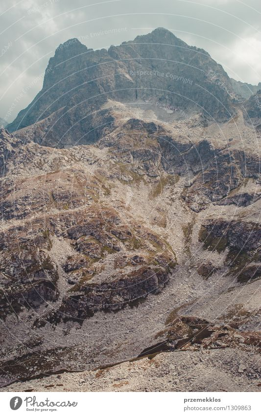 Tatragebirge Natur Landschaft Berge u. Gebirge Felsen Abenteuer Höhe Berghang