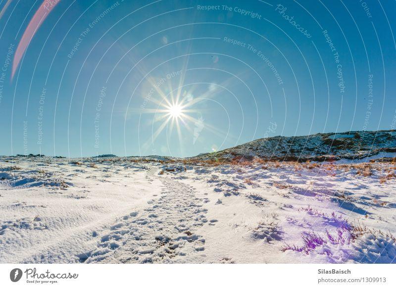 Natur Ferien & Urlaub & Reisen Pflanze schön Sonne Landschaft Ferne Winter Berge u. Gebirge Schnee Freiheit Felsen Eis Tourismus wandern Schönes Wetter