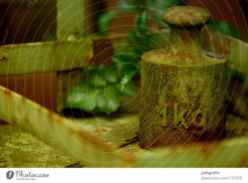 1kg Kilogramm Gramm Waage Patina Blatt grün wiegen Ziffern & Zahlen Buchstaben Typographie Handwerk Gewicht waagschale balkenwaage alt Rost schäbig Garten wägen