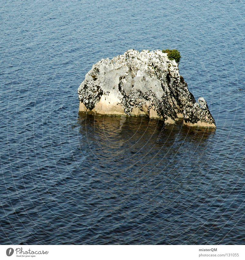 Globale Erwärmung und ihre Folgen. Insel Inseln Meer Hoffnung Überleben Klimawandel Felsen Kraft Einsamkeit dezent Wasser Leben Stein Wellen Detailaufnahme