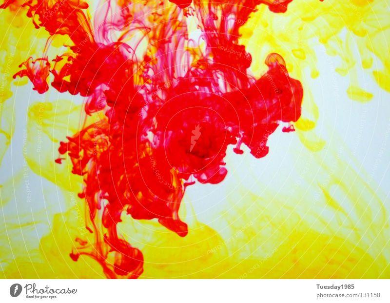 Kampf der Farben 1 Wasser weiß rot gelb Farbe Verlauf