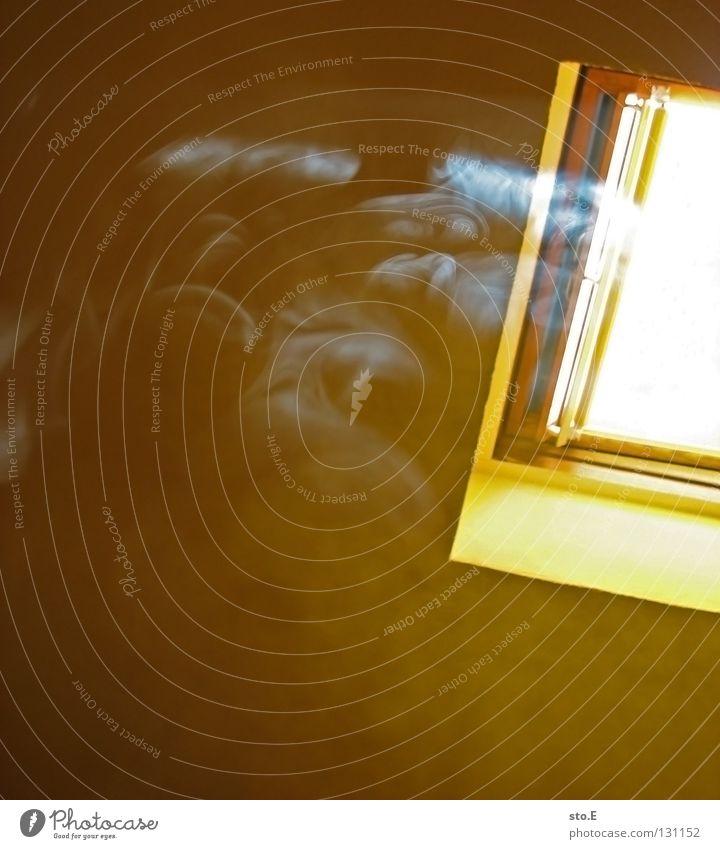 smoke on the water Sonne Fenster Luft Beleuchtung Raum Freizeit & Hobby Nebel gefährlich Dach Suche bedrohlich Schönes Wetter Rauchen Schutz Gastronomie