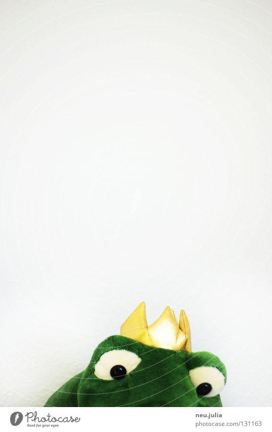 Froschkönig Wasser grün Tier träumen See gold nass Dinge Brunnen Spielzeug Küssen Baumkrone Teich Märchen König