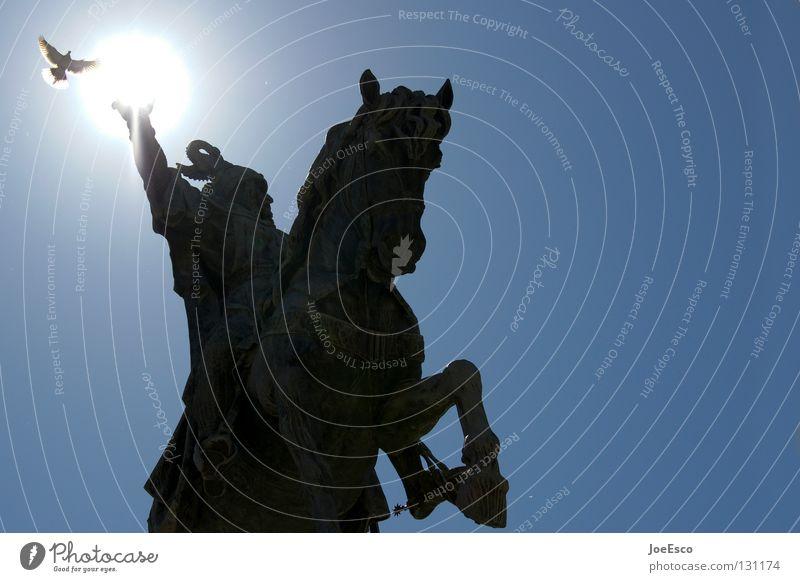 lichtreiter Himmel Sonne Ferien & Urlaub & Reisen schwarz Tier Vogel fliegen Eisenbahn Pferd Europa Perspektive bedrohlich Reisefotografie stark Statue Wildtier