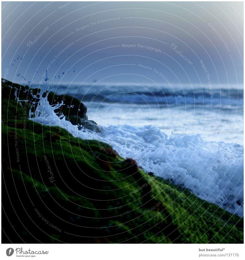 wellenbrecherin° schön Meer grün Sommer Strand ruhig Traurigkeit Wellen Küste Wind weich zart Flut Rauschen