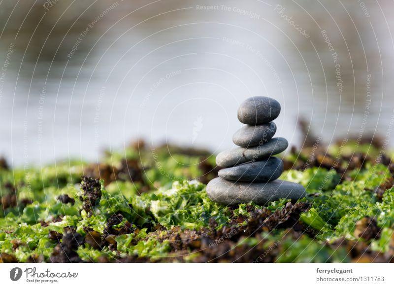 Balance und Harmonie grün Wasser Gefühle Religion & Glaube grau Kunst Stein Zufriedenheit gleich