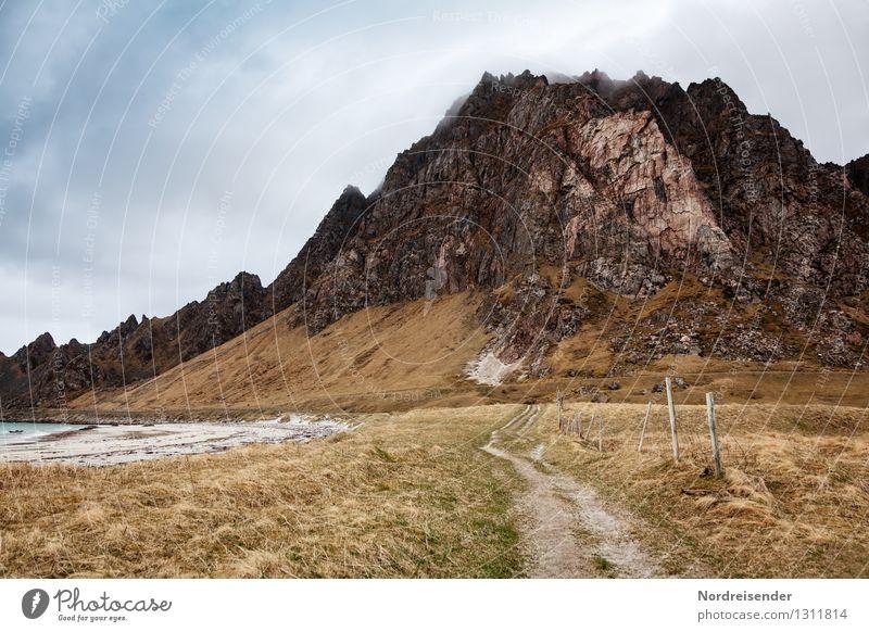Vesterålen Meer Berge u. Gebirge wandern Natur Landschaft Urelemente Wolken Klima schlechtes Wetter Gras Küste Wege & Pfade dunkel natürlich Fernweh Einsamkeit