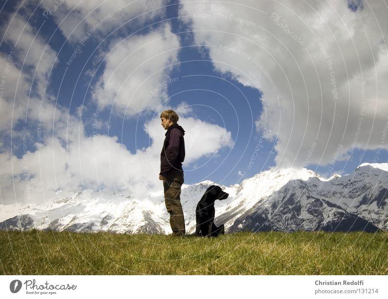 mann mit hund sucht.... Feld Hügel Gras Hund Labrador Wiese Wolken Frühlingstag Spaziergang grün schwarz weiß Mann Alm ignorieren Aussicht Tier Berge u. Gebirge