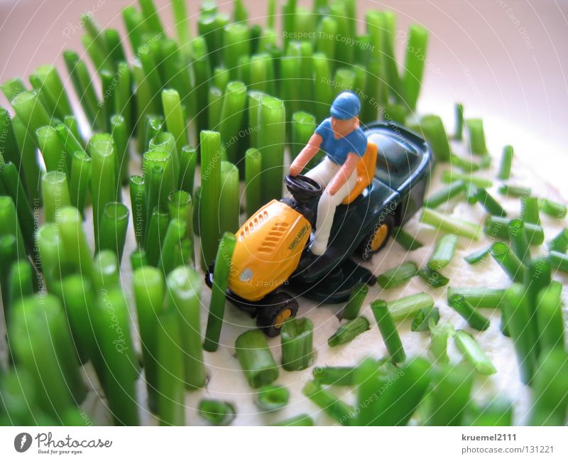 """Rasen mähen"" grün Kräuter & Gewürze Sommer Farbe Wiese Gras Humor Ernährung Gartengeräte weich Küche Muster Witz geschnitten Pflanze"