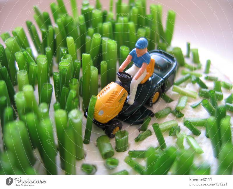 """""""Rasen mähen"""" Wiese grün Gras Schnittlauch Frischkäse weich Rasenmäher Sommer Küche geschnitten Farbe Ernährung Aufsitzer Witz Muster"""