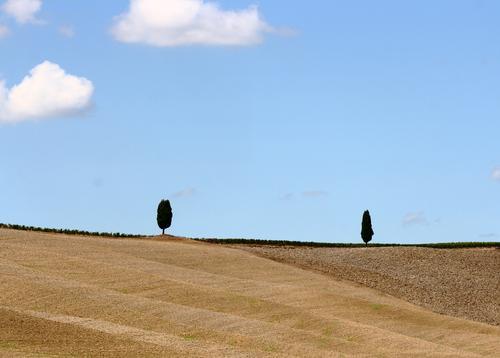 Begegnung Himmel Natur blau Pflanze Sommer Baum Landschaft Wolken Umwelt braun Paar Sand Feld Erde Italien Schönes Wetter